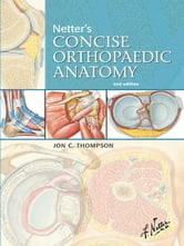 Netter's Concise Orthopaedic Anatomy E-Book, Updated Edition ebook by Jon C. Thompson