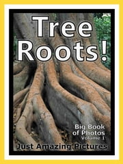 Just Tree Root Photos! Big Book of Photographs & Pictures of Tree Roots, Vol. 1 ebook by Big Book of Photos