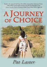 A Journey of Choice ebook by Pat Laster