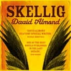 Skellig audiobook by David Almond
