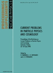 Current Problems in Particle Physics and Cosmology: Proceedings of the Workshop on Current Problems in Particle Physics and Cosmology, Ioannina, Greec ebook by Tamvakis, K.