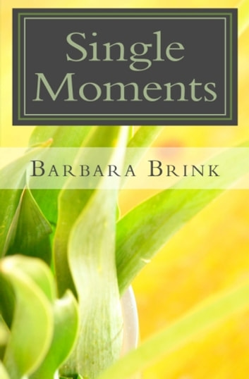 Single Moments ebook by Barbara Brink