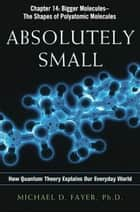 Absolutely Small, Chapter 14 ebook by Michael D. FAYER