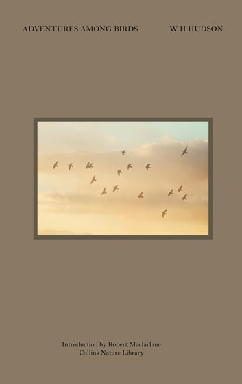 Adventures Among Birds (Collins Nature Library) ebook by W.H. Hudson