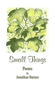 Small Things ebook by Jonathan Barnes
