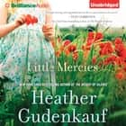 Little Mercies audiobook by Heather Gudenkauf