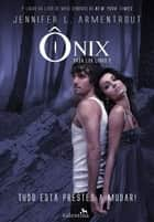 Ônix ebook by Jennifer L. Armentrout