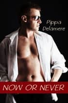 Now or Never ebook by Pippa Delamere