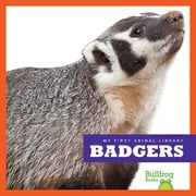 Badgers audiobook by Mari Schuh