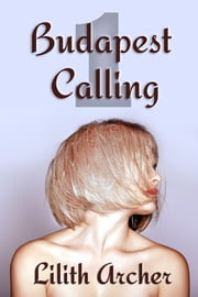 Budapest Calling - The Artist and the Billionaire's First Encounter ebook by Lilith Archer