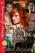 Two Wolves and a Candy Seller ebook by Cara Adams