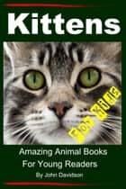Kittens: For Kids - Amazing Animal Books For Young Readers ebook by John Davidson