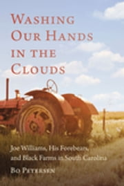 Washing Our Hands in the Clouds - Joe Williams, His Forebears, and Black Farms in South Carolina ebook by Bo Petersen