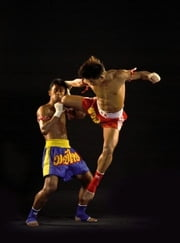 Muay Thai Kickboxing For Beginners ebook by Theresa Dufrane