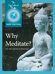 Why Meditate? - The True Purpose of Meditation ebook by Imre Vallyon
