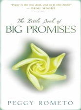 The Little Book of Big Promises ebook by Peggy Rometo