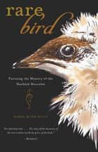 Rare Bird ebook by Maria Mudd Ruth