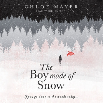 The Boy Made of Snow audiobook by Chloe Mayer
