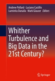 Whither Turbulence and Big Data in the 21st Century? ebook by Andrew Pollard,Luciano Castillo,Luminita Danaila,Mark Glauser