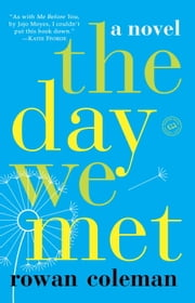 The Day We Met - A Novel ebook by Rowan Coleman