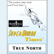 True North audiobook by Lance Woods