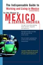 In the Know in Mexico & Central America - The Indispensable Guide to Working and Living in Mexico & Central America ebook by Jennifer Phillips