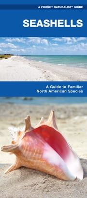 Seashells - A Folding Pocket Guide to Familiar North American Species ebook by James Kavanagh,Raymond Leung