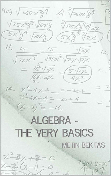 Algebra - The Very Basics ebook by Metin Bektas