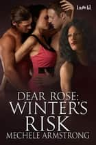 Winter's Risk ebook by Mechele Armstrong