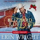 Blizzard of Love - A Western Holiday Romance Novella audiobook by Erin Wright