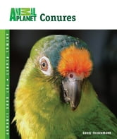 Conures ebook by Carol Frischmann