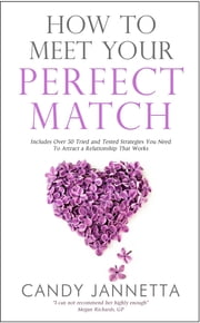 How To Meet Your Perfect Match: Includes Over 50 Tried and Tested Strategies You Need To Attract a Relationship That Works ebook by Candy Marina Jannetta