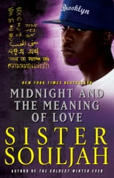 Midnight and the Meaning of Love ebook by Sister Souljah