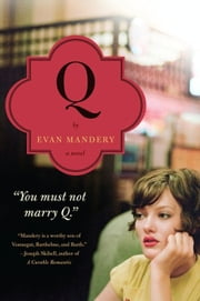 Q: A Novel ebook by Evan Mandery