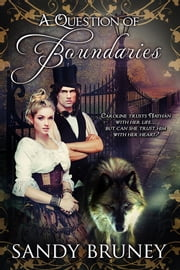 A Question of Boundaries ebook by Sandy Bruney