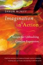 Imagination in Action ebook by Shaun McNiff