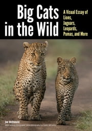 Big Cats in The Wild - A Visual Essay of Lions, Jaguars, Leopards, Pumas, and More ebook by Joe & Mary Ann McDonald