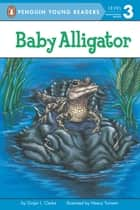 Baby Alligator ebook by Ginjer L. Clarke, Neecy Twinem, Brittany Hatrack