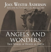 Angels And Wonders ebook by Joan Wester Anderson