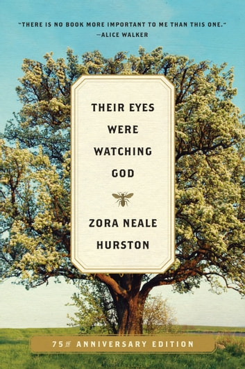 an analysis of personal relationships in their eyes were watching god by zora neale hurston Zora neale hurston's 'their eyes were watching god': analysis eyes were watching god' zora neale hurston's relationship between humankind and god.