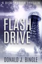 Flash Drive ebook by