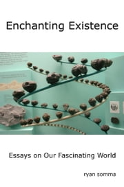 Enchanting Existence - Essays on our Fascinating World ebook by Ryan Somma