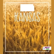 Kansas audiobook by Angie Swanson