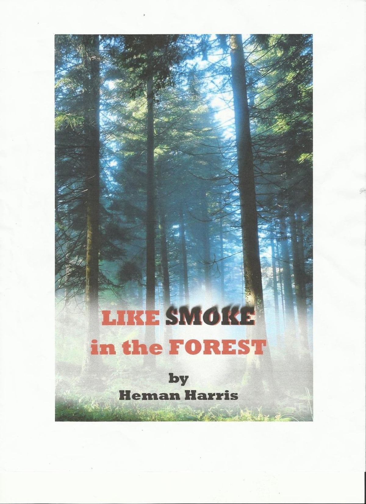 Like Smoke in the Forest eBook by Heman Harris - 9781481938464 | Rakuten  Kobo