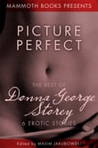 The Mammoth Book of Erotica presents The Best of Donna George Storey