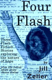 The Flash Collection ebook by Jill Zeller
