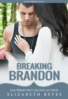 Breaking Brandon (Fate #2) ebook by Elizabeth Reyes