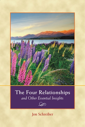 The Four Relationships and Other Essential Insights ebook by Jon Schreiber