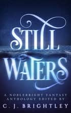 Still Waters: A Noblebright Fantasy Anthology ebook by CJ Brightley, JA Andrews, Gustavo Bondoni,...
