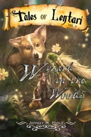 Wizard in the Woods ebook by Jeffrey M. Poole